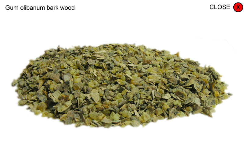 Gum olibanum bark wood
